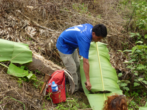 Our guide trimming banana leaves to be used as a table at lunchtime.