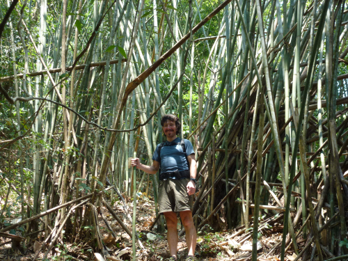 Our second day of trekking was just as exciting as the first, with more dense bamboo to weave our way through...