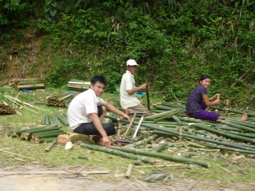 Bamboo being chopped into metre-ish lengths at the roadside