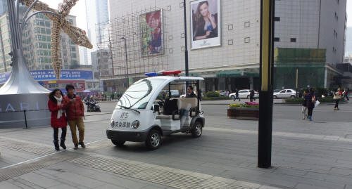 Could this be a Panda-car?