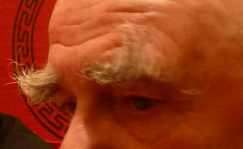Dad's long eyebrows: much admired and never outclassed.