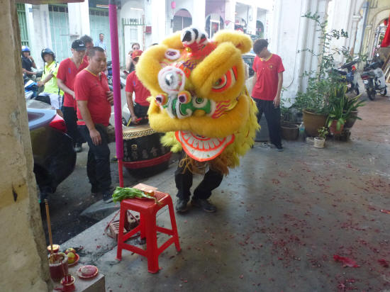 Lion approaches the offering, including the red envelope