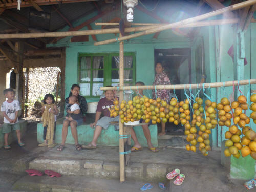 Family selling canistel fruit.